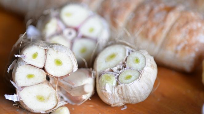 GarlicBBP_1368